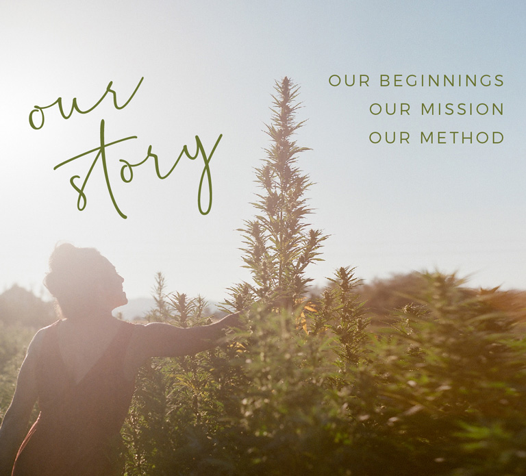 VC-Website-Banners-640w-2021_foco-our-story-768
