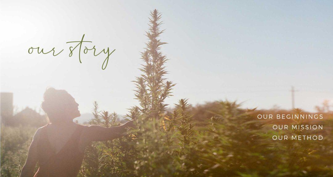 foco-organics-our-story
