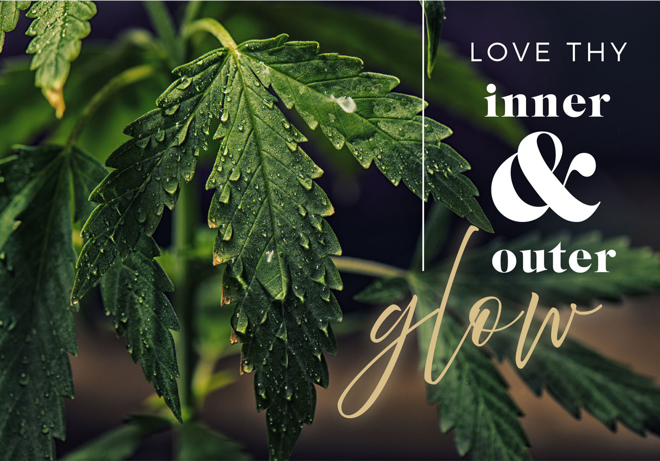 VC-Website-Banners-2021_pm-love-glow-1300