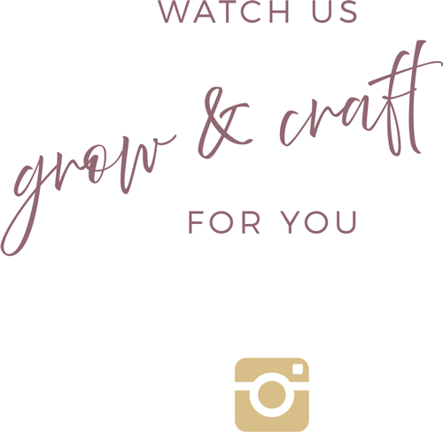 Verde-Collection-Website-Page-Layouts-R2-1080w_pm-grow-and-craft-insta-500