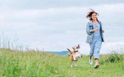 Pups, Endocannabinoid System  + CBD