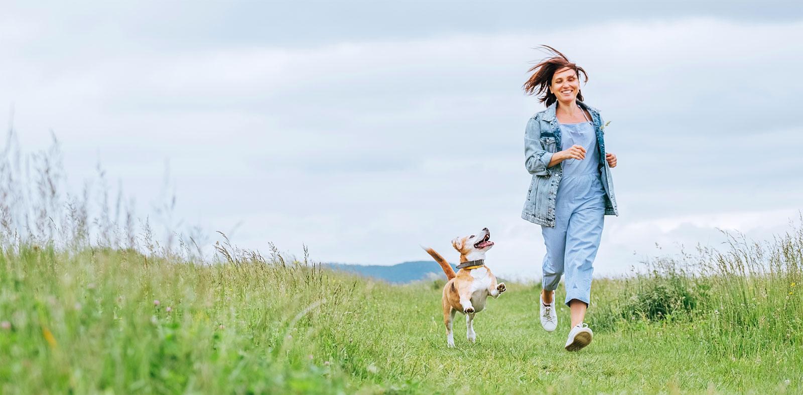 Pups_Endocannabinoid_System-_CBD_6_24_21